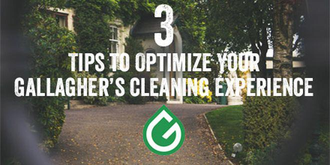 How to Prep for Carpet Cleaning
